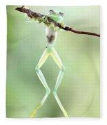 Glass Frog Fleece Blanket