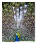 Glassy Peacock  Fleece Blanket