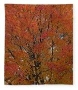 Glorious Autumn Fleece Blanket