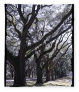 Glorious Live Oaks With Framing Fleece Blanket