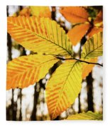 Glowing Beech Leaf Branch Fleece Blanket