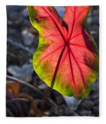 Glowing Coladium Leaf Fleece Blanket