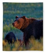 Glowing Grizzly Bear Fleece Blanket