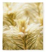 Glowing In Sunlight Golden Plants Fleece Blanket