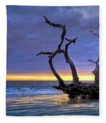 Glowing Sands At Driftwood Beach Fleece Blanket