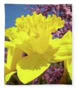 Glowing Yellow Daffodils Art Prints Pink Blossoms Spring Baslee Troutman Fleece Blanket