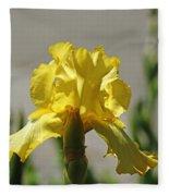 Glowing Yellow Iris Fleece Blanket