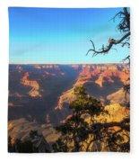 Gnarled Juniper On Canyon Rim Fleece Blanket