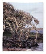 Gnarled Oak Trees Fleece Blanket