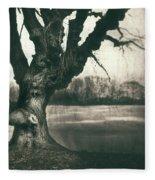 Gnarled Old Tree Fleece Blanket