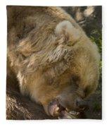 Gnaw Fleece Blanket