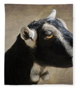 Goat  1 Fleece Blanket