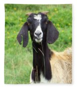 Goat Dental Floss Fleece Blanket
