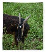 Goat With Long Horns In A Grass Field Fleece Blanket
