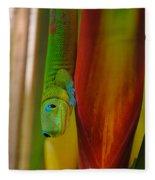 Gold Dust Day Gecko Fleece Blanket