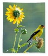 Gold Finch Fleece Blanket