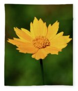 Gold In The Garden Fleece Blanket