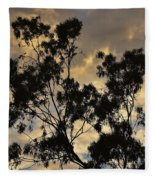 Gold Sunset Tree Silhouette I Fleece Blanket