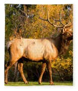 Golden Bull Elk Portrait Fleece Blanket
