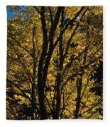 Golden Colors Of Autumn In New England  Fleece Blanket