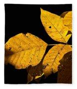 Golden Glow Fleece Blanket
