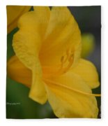 Golden Lily 18-2 Fleece Blanket