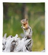 Golden Mantled Ground Squirrel Fleece Blanket