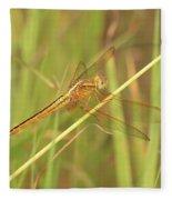 Golden Marsh Dragonfly Fleece Blanket