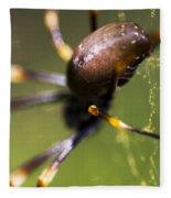 Golden Orb Spider Fleece Blanket