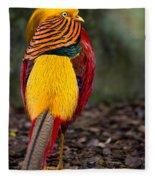 Golden Pheasant Fleece Blanket