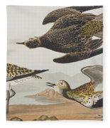 Golden Plover Fleece Blanket