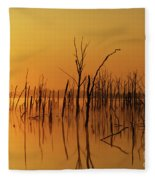 Golden Reflections Fleece Blanket