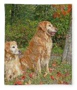 Golden Retriever Dogs In Autumn Fleece Blanket