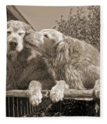 Golden Retriever Dogs The Kiss Sepia Fleece Blanket