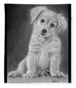 Golden Retriever Puppy Drawing Fleece Blanket