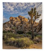 Golden Rocks Fleece Blanket