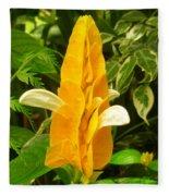 Amazing Golden Shrimp Plant  Fleece Blanket