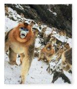 Golden Snub-nosed Monkey Fleece Blanket