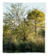 Golden Trees Fleece Blanket