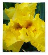 Golden Yellow Iris Flower Garden Irises Flora Art Prints Baslee Troutman Fleece Blanket