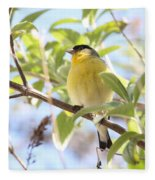 Goldfinch In Spring Tree Fleece Blanket