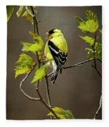 Goldfinch Suspended In Song Fleece Blanket