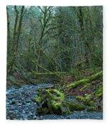 Goldstream Park Panorama Fleece Blanket