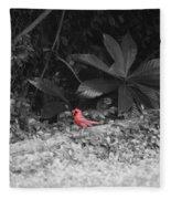 Good Morning Cardinal  Fleece Blanket