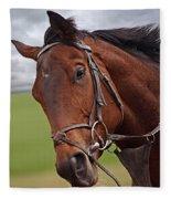 Good Morning - Racehorse On The Gallops Fleece Blanket