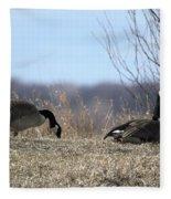 Goose And Gander Fleece Blanket