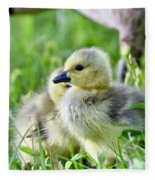 Goose Chick Fleece Blanket