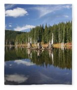Goose Lake Fleece Blanket