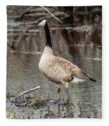 Goose Posing Fleece Blanket