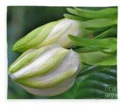 Best Buds Gorgeous Gardenia Flower Buds Fleece Blanket